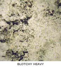 Blotchy Heavy