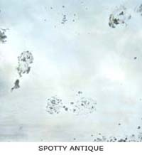 Spotty Antique